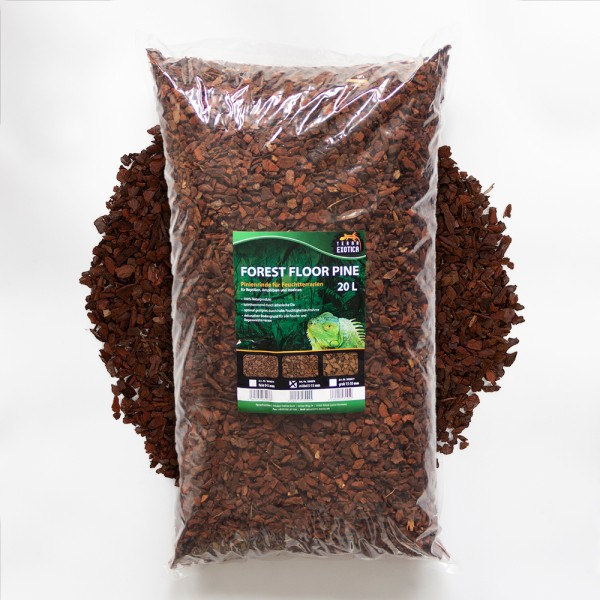 Forest Floor Pine 20L - Pinie mittel 5 - 12 mm