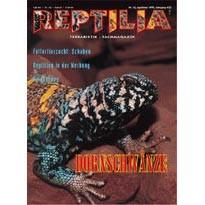 Reptilia 16 - Dornschwänze