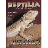 Reptilia 25 - Bartagamen
