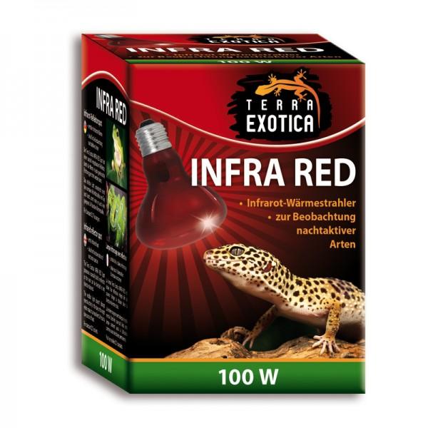 Infra Red 100 Watt - Infrarot Reflektorstrahler
