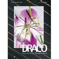 Draco 24 - Spinnen