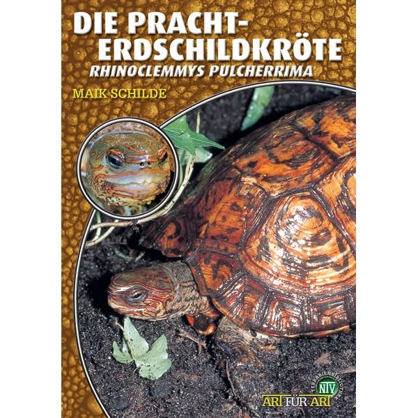 Art für Art - Die Pracht-Erdschildkröte