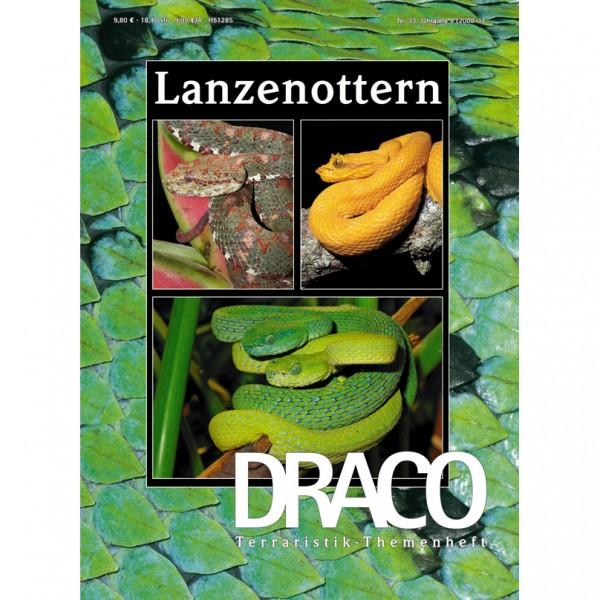 Draco 33 - Lanzenottern