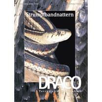 Draco 25 - Strumpfbandnattern