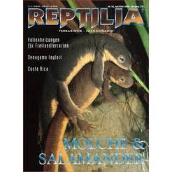 Reptilia 34 - Molche Salamander