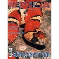 Reptilia 29 - Königsnattern
