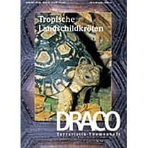 Draco 8 - Tropische Landschildkröten