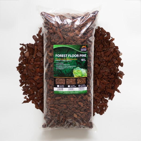 Forest Floor Pine 10L - Pinie grob 15 - 30 mm