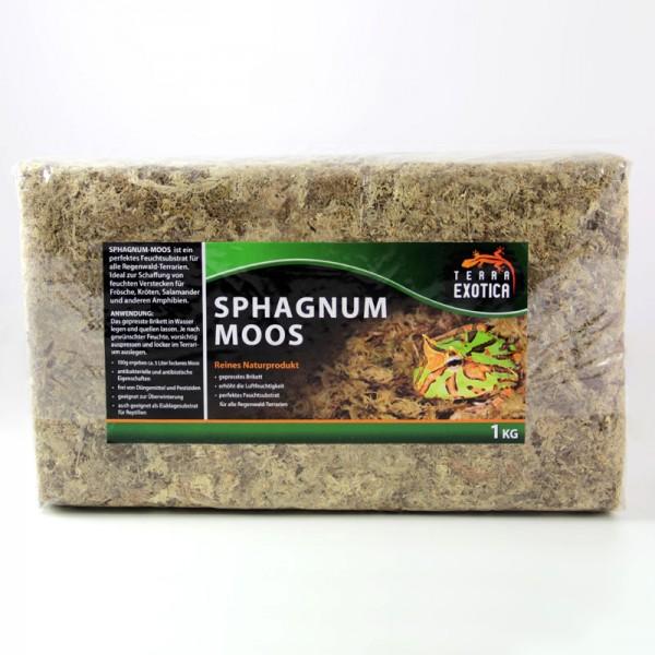 Sphagnum Moos 1 kg