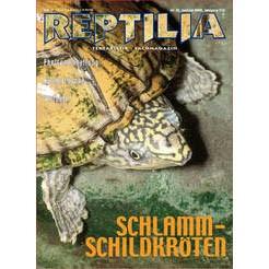 Reptilia 35 - Schlammschildkröten