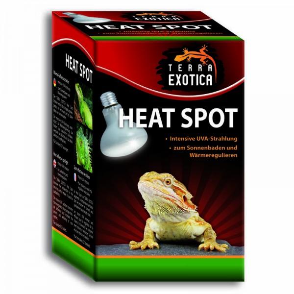 Heat Spot 100 Watt
