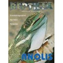 Reptilia 27 - Anolis