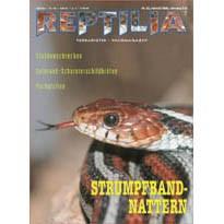 Reptilia 23 - Strumpfbandnattern