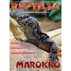 Reptilia 75 - Marokko