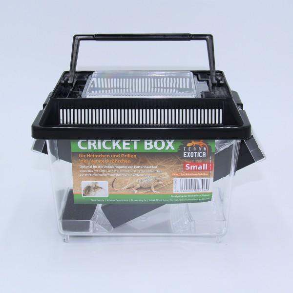 Cricket Box - small 18 x 11 x 14 cm