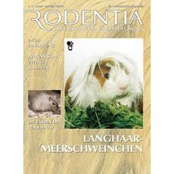 Rodentia 7 - Langhaar-Meerschweinchen