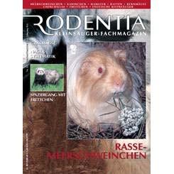 Rodentia 22 - Rassenmeerschweinchen