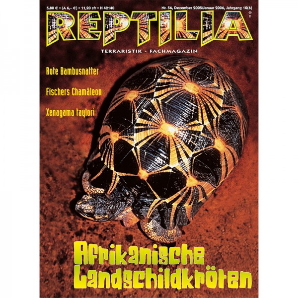 Reptilia 56 - Afrikanische Landschildkröten