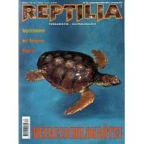 Reptilia 30 - Meeresschildkröten