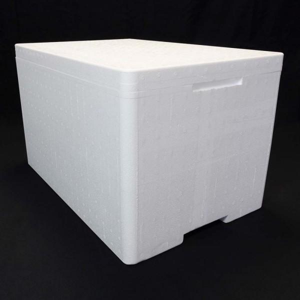 Styroporbox Pro - 50,3 Liter - 59,5 x 39,5 x 36,5 cm / 3,5 cm Wandstärke