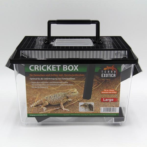 Cricket Box - large 30 x 19,5 x 20,5 cm