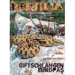 Reptilia 76 - Giftschlangen Europas