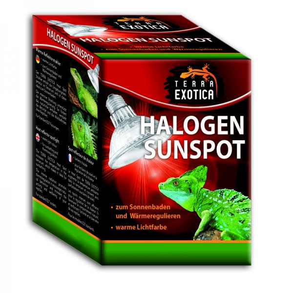 Halogen Sunspot 50 Watt - Halogen Spotstrahler