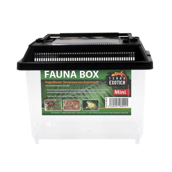 Fauna Box - mini 18 x 11 x 14 cm