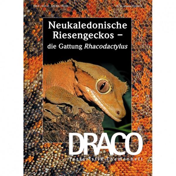 Draco 36 - Neukaledonische Riesengeckos