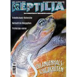 Reptilia 85 - Schlangenhalsschildkröten