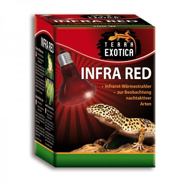 Infra Red 40 Watt - Infrarot Reflektorstrahler