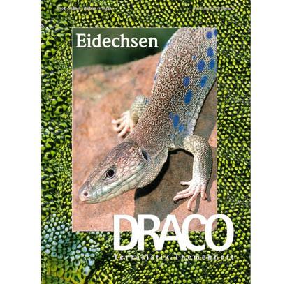 Draco 21 - Eidechsen