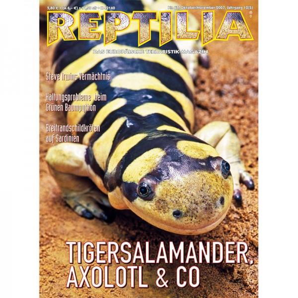 Reptilia 67 - Tigersalamander