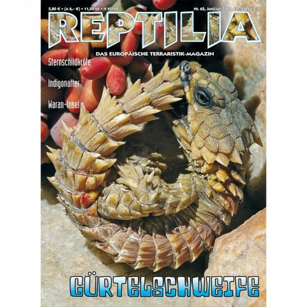 Reptilia 65 - Gürtelschweife